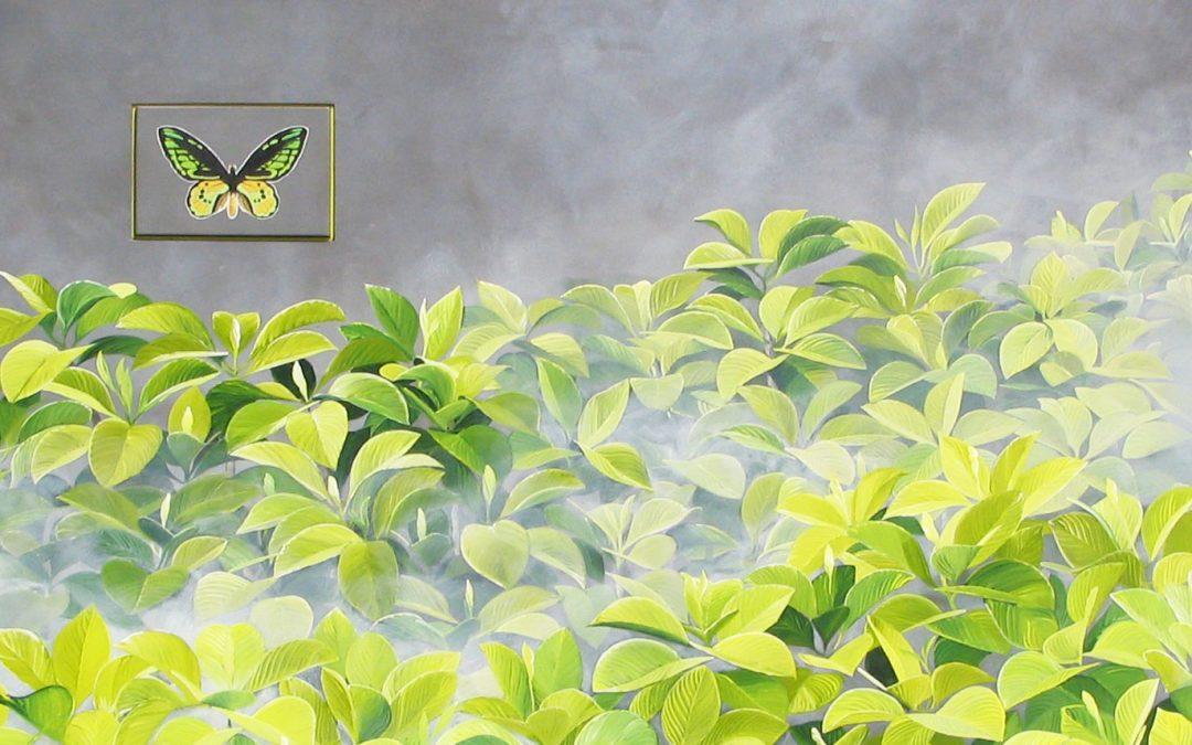 BIRDWING SERIES